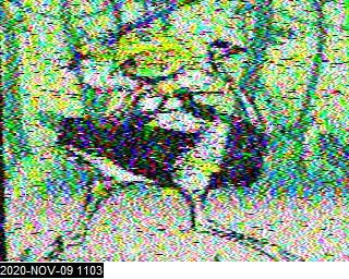 KO5MO image#18